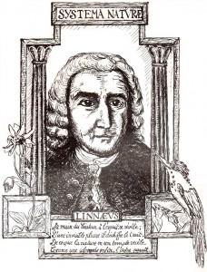 LinnéBenzécri